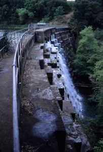 "Searsville Dam Exposed Click on ""Play Slideshow"", below, to view larger images and descriptions or click HERE to download a more detailed slideshow and to print."